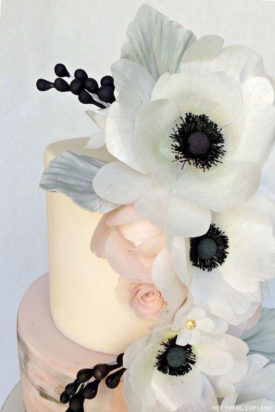 black_white_anemone_3.jpg